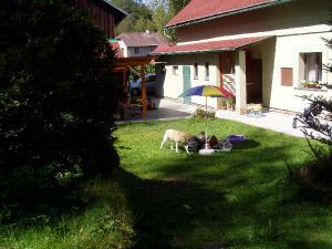 Chalupa U Zvonku - Pohled ze zahrady