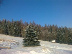 Chalupa Rajnochovice - zimní pohled