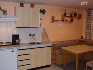 Apartmány Karásková - Kuchyně v apartmánu