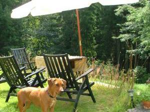 Chalupa pod Bramberkem - Letní posezení