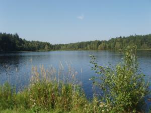 Chalupa Pod Rozhlednou - Křišťanovický rybník