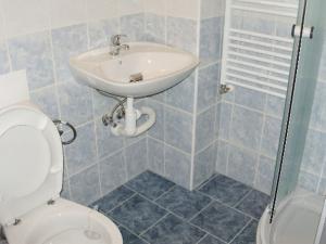 Dům s apartmány U Kožešníků - WC se sprchou