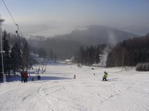Horská chalupa U Kožešníků - Sjezdovka Ski areál Hartman
