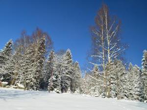 Horská chata Barbora - Zahrada, zima