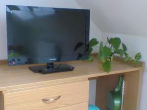 Penzion u Radnice - TV,lze připojit vaší USB flash paměť,nebo DVD disk