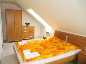 Apartmány V Centru U Zámečku - pokoj v apartmánu Sokolov u Zámku