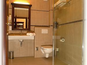 Hotel U krále & Apartmány *** - Koupelna se sprchou