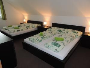 Apartmánový domek U Lucie - Ložnice 1