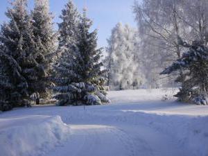 Ubytování Holcovi - Okolní krajina v zimě
