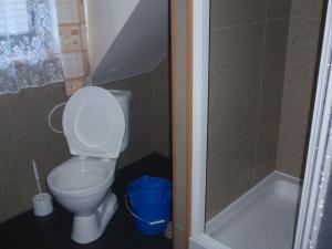 Chalupa - podkrovní byt - koupelna,  WC