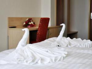 Hotel Bobík - Konopné lázně - Hotel Bobík - Konopné lázně, pokoj pro hosty