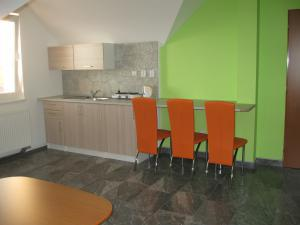 UBYTOVÁNÍ NA VYHLÍDCE - Ubytování Na Vyhlídce - kuchyň apartmánu