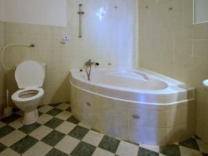Hotel Bílý koníček - koupelna v hotelu Bílý koníček Jižní čechy