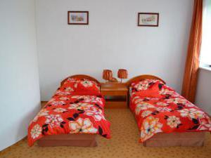 Levandule *** - Levandule, ubytování v penzionu v Brně