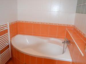 Levandule *** - Koupelna v penzionu levandule, Krílovo pole, Brno