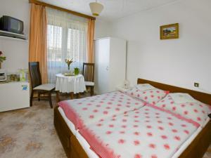Pension Hany -  ubytování v hotelu Hany v Mariánských Lázní