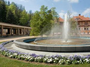 Vila Jiřinka - Ubytování hotel wellness penzion Luhačovice