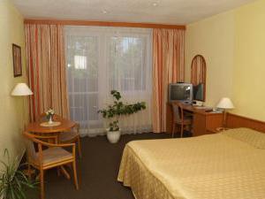 Lázeňský hotel Pyramida I - Pokoj v Mariánsko-lázeňském hotelu Pyramida I