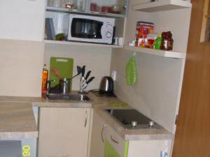 Ubytování u Petry a Milana - apartmán kuchyňka