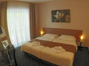 INTERHOTEL AMERICA - Inter hotel Amerika v Písku