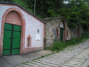 Chalupa Bořetice - Bořetické viné sklípky na Kraví hoře