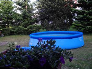 Chata Borůvka - Bazén pro osvěžení