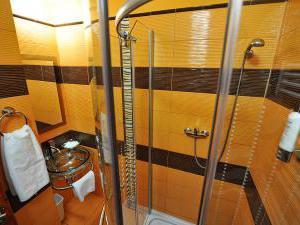 Hotel ARTE - Třílůžkový pokoj Standard - koupelna