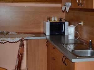 Privat ADA Nova Lesna - kuchyna s posedenim