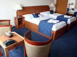 Hotel Theresia - Hotel Theresia, dvojlůžkový pokoj