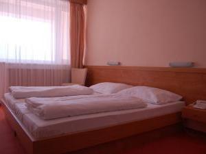 Activitypark Hotel Všemina -