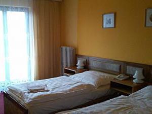 Hotel Zvíkov*** - Hotel Zvíkov, pokoj