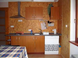 Apartmány  POD LESEM- podkrovní apartmán C - Apartmány POD LESEM- apart. C, kuchyně