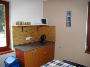 Apartmány  POD LESEM- podkrovní apartmán C - Apartmány POD LESEM- apart. C, kuchyně 2