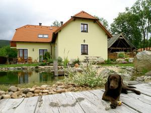 Apartmán Vyšný ** Český Krumlov - Česko-krumlovský apartmán v přírodě