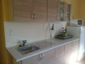Apartmán Wellness - Kuchyně