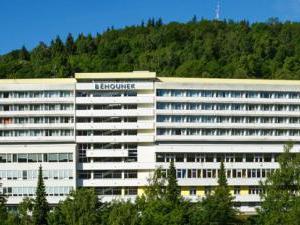 Spa Hotel Běhounek - Hotel Běhounek - exteriér