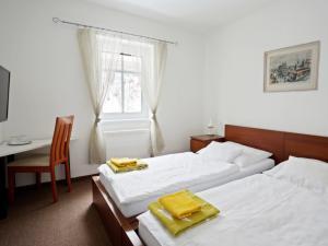 Penzion Blaník - Dvoulůžkový pokoj