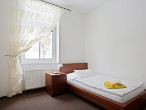 Penzion Blaník - Jednolůžkový pokoj