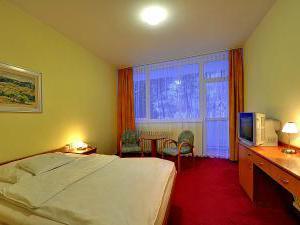 Spa Hotel Běhounek - Jednolůžkový pokoj kat. I.A