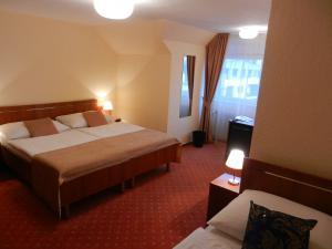 Hotel Tábor - Třílůžkový pokoj