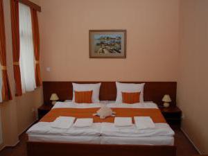 Hotel Podhradie - dvojlôžková izba s manželskou posteľou