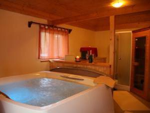 Penzion a restaurace U Čerta Čtyřkoly - privátní vířivka a infra-sauna